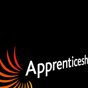 Apprenticeships with Francesco Group