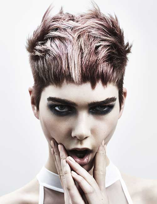 BHA 2016 Colour - Francesco Group Hairdressing Collections