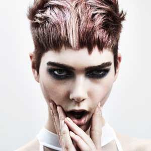 Francesco Group Hairdressing Salons