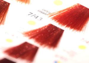 Colour - Francesco Group