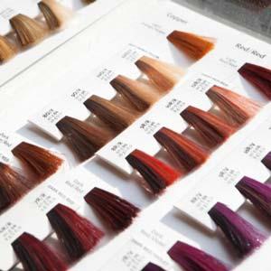 Francesco Group Colour Services