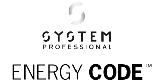 System Professional Energy Code