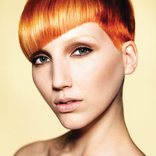 True Colour - Francesco Group Hairdressing Collections